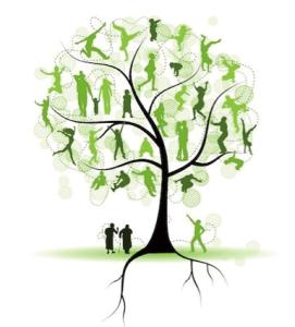 joni-tree